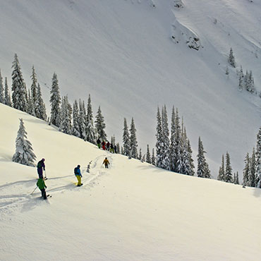 Timberline Powder Tours